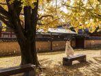 pengunjung-yang-sedang-menikmati-liburan-musim-gugur-di-istana-gyeongbok.jpg