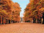 pesona-musim-gugur-di-inggris.jpg