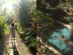 plataran-canggu-resort-spa.jpg