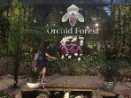 potret-pintu-masuk-orchid-forest-cikole.jpg