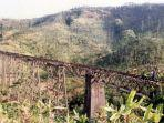 pt-kereta-api-indonesia-mengaktifkan-kembali-jalur-kereta-api.jpg