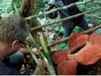 rafflesia-arnoldi_20170612_144720.jpg