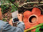 rafflesia-arnoldii_20170515_133404.jpg