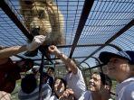 safari-lion-zoo_20180126_101337.jpg