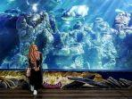 sea-world-ancol-jakarta.jpg