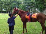 seorang-anak-belajar-menunggangi-kuda-di-sekolah-berkuda-wisata-selorejo.jpg
