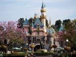sleeping-beauty-castle-disneyland.jpg