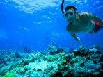 snorkeling_20180910_152532.jpg