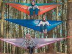 spot-foto-instagramable-di-hutan-pinus-pengger.jpg