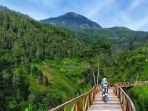 spot-jembatan-kayu-di-tawangmangu-wonder-park.jpg