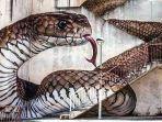 street-art-di-guarda-portugal_20180713_213936.jpg
