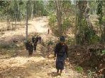 suku-kajang-bulukumba-sulawesi-selatan_20180802_134124.jpg