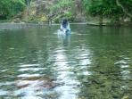 sungai-landak-sumatera-utara_20160920_203601.jpg