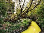 sungai-tercemar-skotlandia.jpg