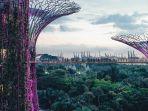 supertree-grove-gardens-by-the-bay-singapura.jpg