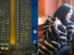 syahrini-menginap-di-hotel-westin-tokyo.jpg