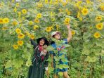taman-bunga-matahari-di-daerah-banyumas_20180703_113856.jpg