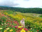 taman-bunga-warna-warni-di-puthuk-soeko.jpg