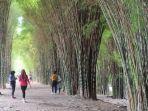 taman-harmoni-atau-taman-hutan-kota-keputih-surabaya1.jpg
