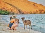 taman-nasional-komodo_20180806_123042.jpg