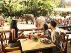 taman-safari-indonesia-di-bogor.jpg