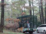 taman-safari-prigen-imgs.jpg