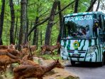 taman-safari-prigen_20180312_124610.jpg