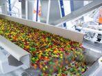 tawaran-magang-di-perusahaan-permen-dan-cokelat-terkemuka-di-dunia.jpg