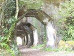 terowongan-hakkaku-di-jepang.jpg