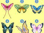 tes-kepribadian-dengan-cara-memilih-gambar-kupu-kupu-yang-kamu-suka.jpg