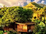the-tree-house-resort_20180718_150530.jpg