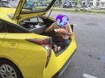 viral-foto-supir-taksi-makan-di-bagasi-mobil.jpg