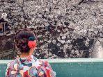 warga-yang-sedang-menyaksikan-mekarnya-sakura.jpg