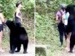 wisatawan-dan-beruang-hitam.jpg