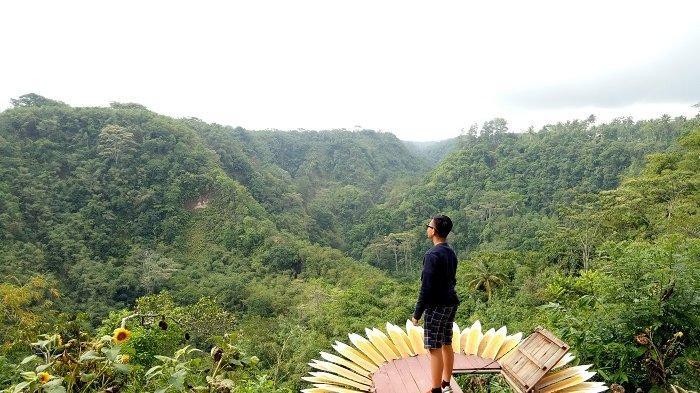 Menikmati Panorama Alam di Green Valley