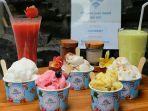 Lezatnya Gelato Berbahan Dasar Coconut Milk Gourmet Gelato Ubud