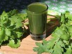 7 Alasan Wajib Minum Jus Seledri, Jaga Kesehatan Ginjal hingga Kurangi Kolesterol