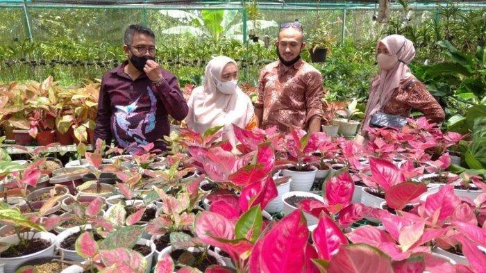 Batam Flower Festival 2020, Suguhkan Pameran Tanaman Hias di Akhir Oktober Nanti