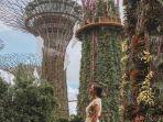 ilustrasi-pengunjung-di-gardens-by-the-bay-singapura.jpg