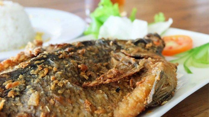 Gurihnya Ikan Nila Goreng Bertekstur Lembut dan Garing Ala Basecamp Food Factory
