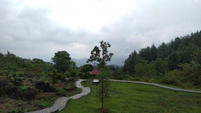 Kebun raya Kuningan di Desa Padabeunghar, Pasawahan, Kuningan,