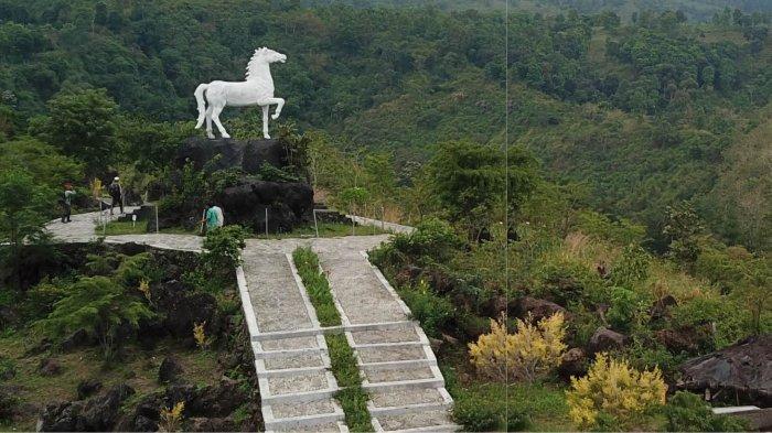 Ada 20.000 Spesimen Tumbuhan di Kebun Raya Kuningan, Kebun Raya Terbesar di Indonesia