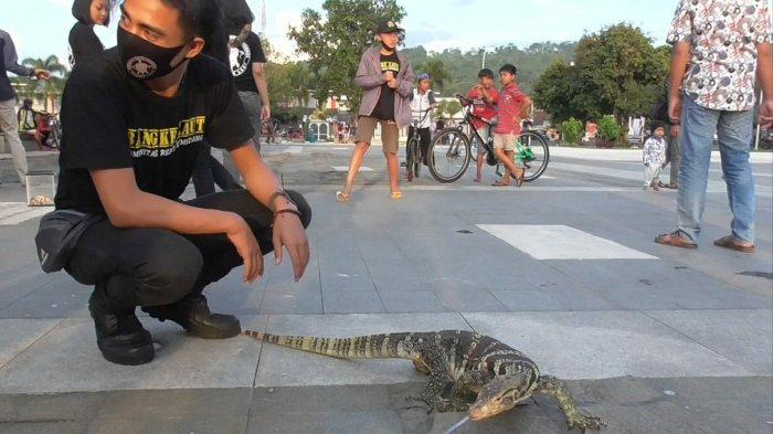 Komunitas Reptil Sumedang saat memperlihatkan hewan peliharaannya ke pengunjung Alun-alun Sumedang.