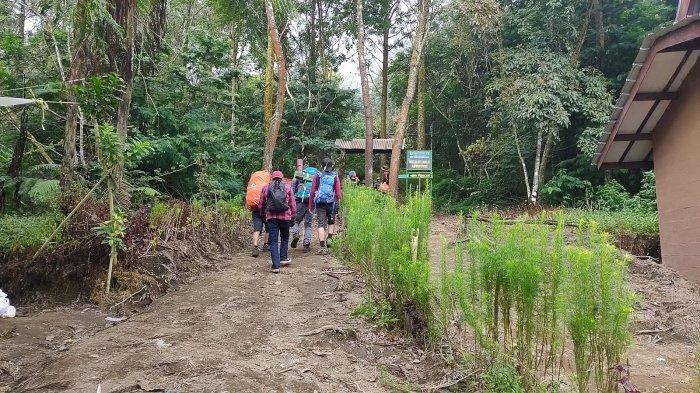 Jalur pendakian ke Gunung Ciremai via Apuy, Majalengka, diminati pendaki, Sabtu (15/5/2021)