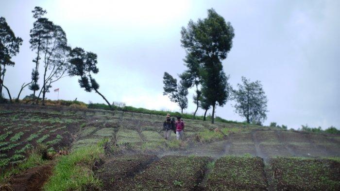 Puncak Sulibra di Gunung Artapela, Kecamatan Kertasari Kabupaten Bandung.