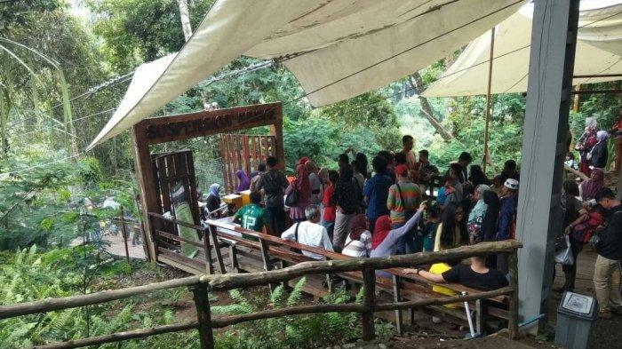 Objek wisata Situgunung Taman Nasional Gunung Gede Panggarango (TNGP) Kabupaten Sukabumi