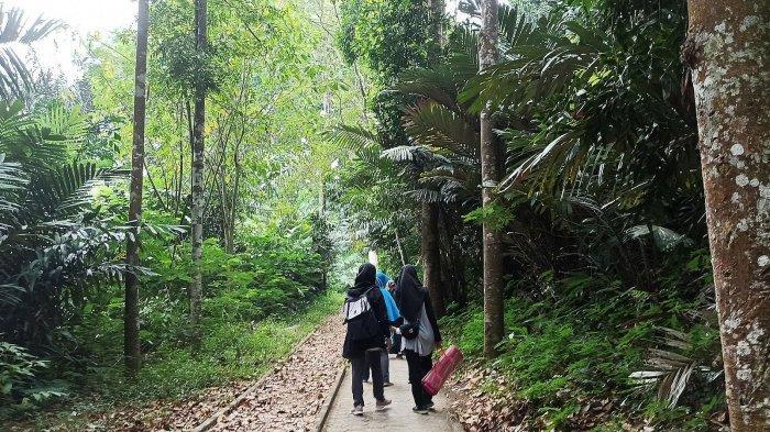 Lintasan pejalan kaki Taman Hutan Raya (Tahura) Ir H Juanda, Dago, Bandung