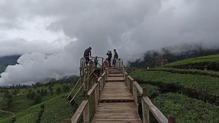 Wayang Windu Panenjoan di ketinggian 1.800 mdpl