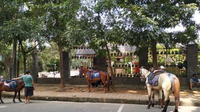 Penjaja kuda menanti wisatawan yang akan menyewa kuda mereka di Taman Cilaki, Kota Bandung, Jumat (14//5/2021)