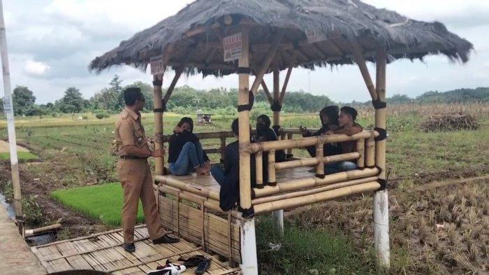 Pematang sawah terletak di Desa Cikaso, Kecamatan Kramatmulya banyak di kunjungi warga. Lokasi ini dikenal sebagai wisata sawah lope, yang belakangan lagi hits di Kabupaten Kuningan.